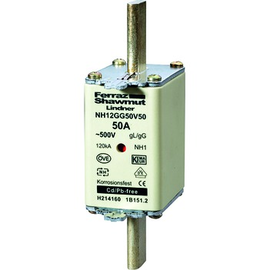 NH1GG50V160 MERSEN NH-SICHERUNG GR 1 160A GL 500 Volt Produktbild
