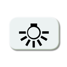 2525 LI-214 BUSCH-JAEGER SYMBOL LICHT REFLEX SI ALPINWEISS Produktbild