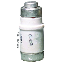 12216494 ELTROPA NEOZED SICHERUNG 6A Produktbild