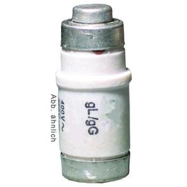 12216495 ELTROPA NEOZED SICHERUNG 10A Produktbild