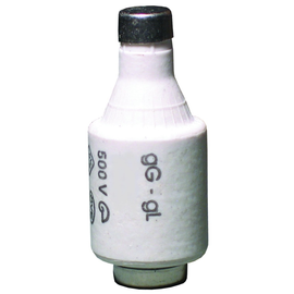 12220143 ELTROPA DZ II/ 4A SICHERUNG GL Produktbild
