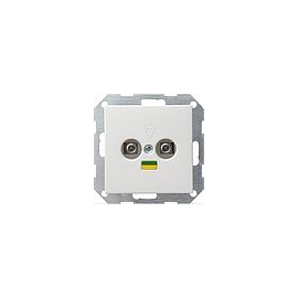 40503 GIRA POTENTIALAUSGLEICH 2FACH SYSTEM 55 REINWEISS Produktbild