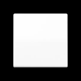 AS1700WW Jung Steuertaste Standard Duroplast Produktbild
