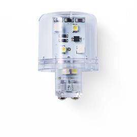 893004405 Auer LED Lampe Dauerlicht klar LLL 24VAC/DC Produktbild