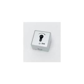 111GE000711 Faac Schlüsseltaster MS-APZ 1-IT/1 Einfachtaster ohne PHZ Produktbild
