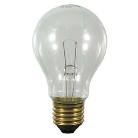 40504,Scharnberger+Hasenbein Glühlampe E27 12V 60W Produktbild