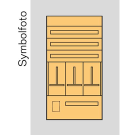 EC6S ERA Zählerverteilereinsatz Salzburg bxhxt=696x1300x155mm Produktbild