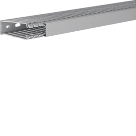 BA780025 TEHALIT Verdrahtungskanal BA7 grau HxB 80x25 Produktbild