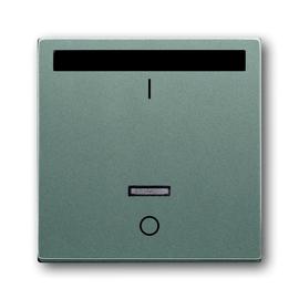 6067-803 BUSCH-JÄGER SO IR-Bed.el.rel. 6067-803 Produktbild
