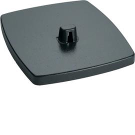 DAFF220009011 HAGER Bodenplatte DAF 2-fach, graphitschwarz Produktbild