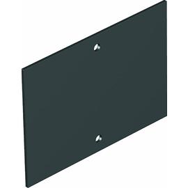 7408228 OBO T4B P0S2 9011 Abdeckplatte ohne Lochbild für T4B 110x77mm Polyvinyl Produktbild