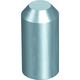 3042251 OBO 1820 25 Schlagkopf für OMEX-Erder 25mm Stahl Produktbild