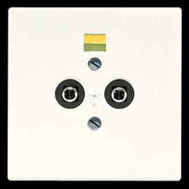 LS965-2 Jung Potentialausgleich- Steckdose Produktbild