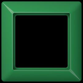 AS581BFGN Jung Rahmen 1fach Produktbild