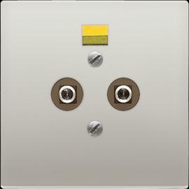 ES2965-2 Jung Potentialausgleich- Steckdose Produktbild