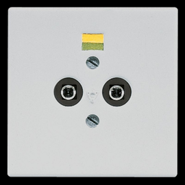 LS965-2LG Jung Potentialausgleich- Steckdose Produktbild