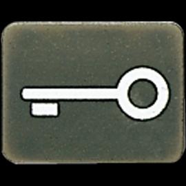 33ANT Jung Taster-Symbol Tuer Produktbild