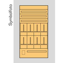 ED8S Era Zählerverteilereinsatz Sbg. Produktbild