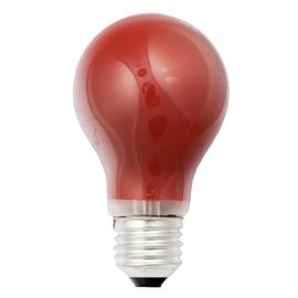 40250 Scharnberger Glühlampe 40W E27 rot Produktbild