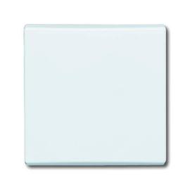 2106-34 BUSCH-JAEGER WIPPE ALLWETTER ALPINWEISS Produktbild