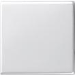 29603 GIRA WIPPE SYSTEM 55 REINWEISS GLÄNZEND Produktbild