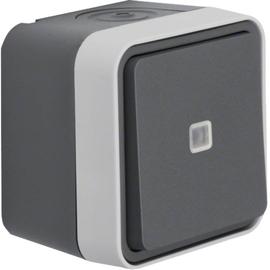 50763505 BERKER W.1 FR AP Taster Linse, Wechsler bel. grau/lichtgrau matt Produktbild