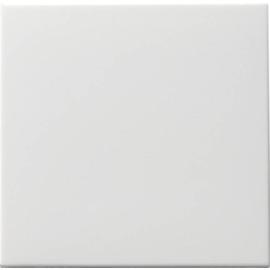 91603 Gira Wippe Tastschalter Wechsel System 55 reinweiss Produktbild