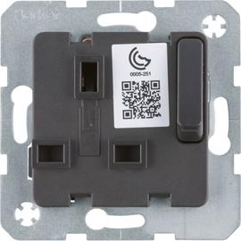 53420216 Berker BERKER SD Einsatz mit Schutzkontakt für  British Standard abs Produktbild