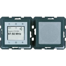 28806086 Berker Q.x Radio Touch anthrazit samt Produktbild