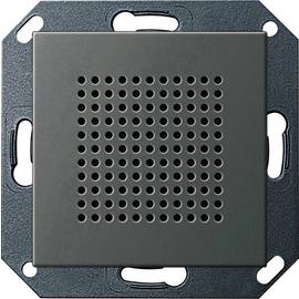 2282600 Gira Lautsprecher UP-Radio RDS System 55 Edelstahl Produktbild