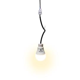 WWTD-ApaLED-27 Wteed Baustellenfassung inkl. Birne 9W warmweiß Produktbild