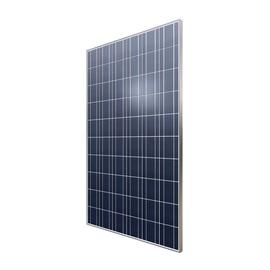 AC275-P/156-60S(FS35) 5BB AXITEC Photovoltaikmodul 275Wp Poly 1640x992x35 Produktbild